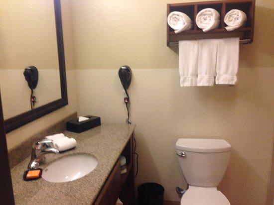 La Quinta Inn & Suites Dallas Love Field : Bathroom