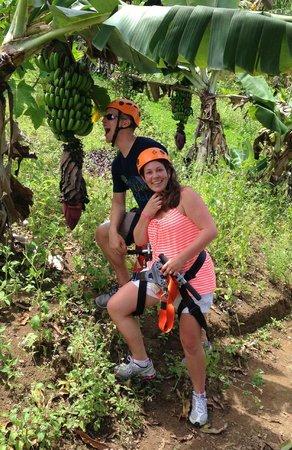 Jungle Zipline : yum!!!!