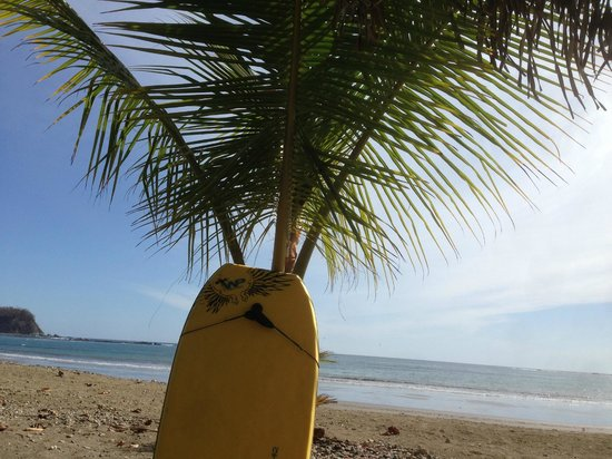 Fenix Hotel - On The Beach : Beachfront at The Fenix, waiting for the surf!