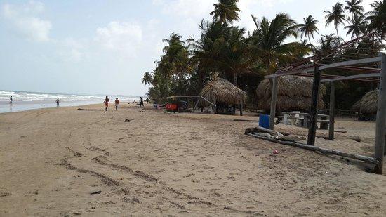 Yerette: Mayaro beach