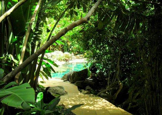 Lodge Roche Tamarin - Village nature