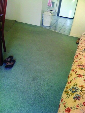 Quest Alphington: Stained carpet complete with nails that cut your feet