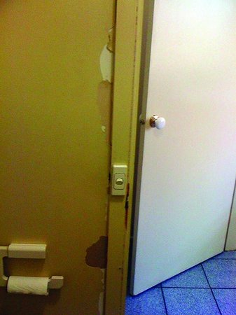 """Quest Alphington: The wall in the """"powder room"""""""