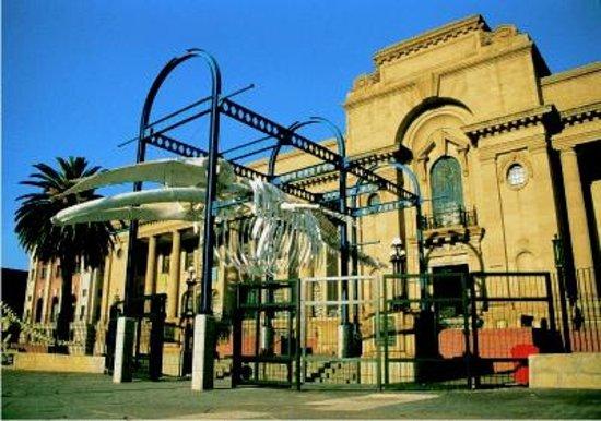 Museum Mall : Natural History Museum Pretoria