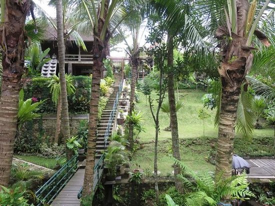Warung Pulau Kelapa : From the river, looking back up to the cafe at the top