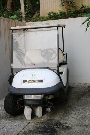 Sugar Palm Grand Hillside: broken buggy on display.