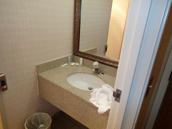 Comfort Inn Trolley Square: View of bathroom sink