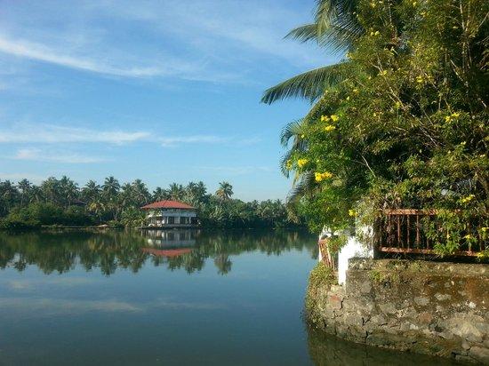Le Meridien Kochi : View from garden
