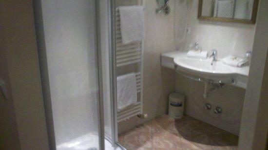 Hotel Gasthof Brücke: shower