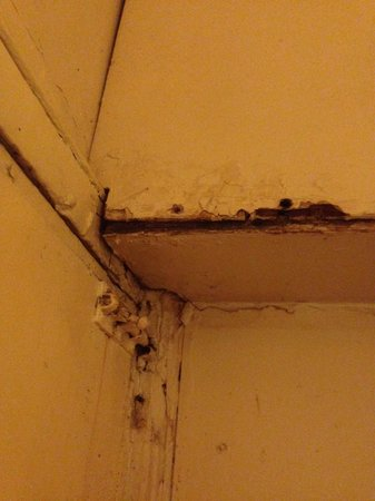 The Continental Hotel : Moisture damaged ceiling