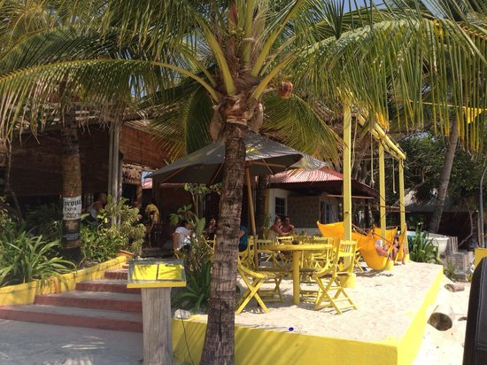 Yellow Cafe : awesome!!