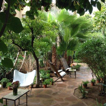 Les Jardins de la Medina: Tuin