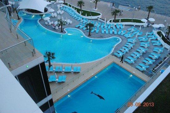 Resort & SPA Hotel NEMO with dolphins: Открытый бассейн
