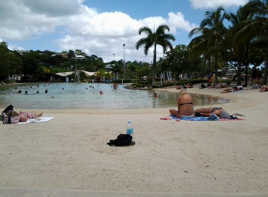 Shingley Beach Resort : Airlie Beach lagoon
