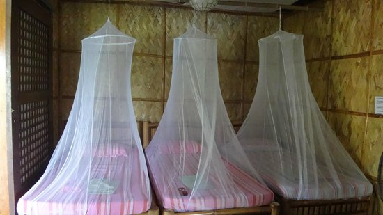Bamboo Beach Resort : Beds with elegant mosquito nets