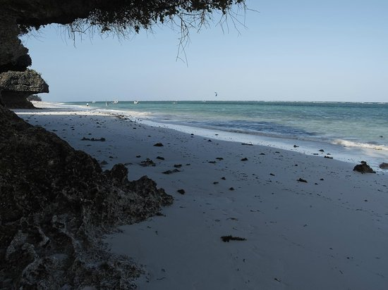 Coral Beach Resort : вид на пляж  отеля ЛЕОПАРД БИЧ