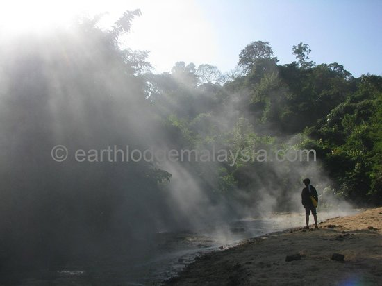 Earth Lodge Ulu Muda: Early morning at Sira Ayer Panas (Hot Spring Saltlick)