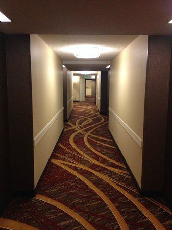 San Francisco Marriott Marquis: Hallway outside the room