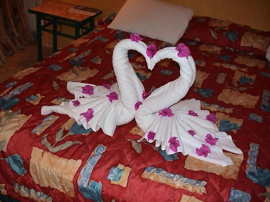 Akumal Beach : Love Swans done by the chambermaid