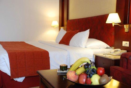 Photo of Safir Hotel Cairo Giza