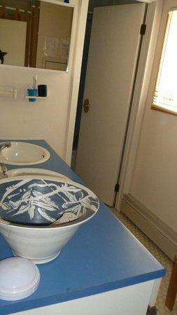 Blue Raven B&B: shared bathroom, double sink, door to shower, toilet