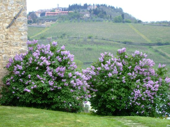 Torre Canvalle : il giardino