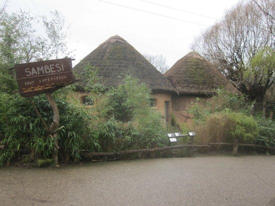 Erlebnis-Zoo Hannover: Really impressive zoo
