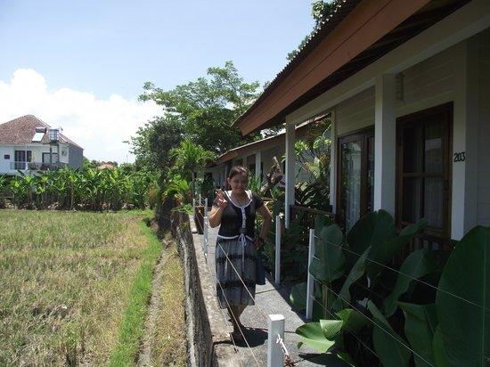 The Studio Bali: Pemandangan Di Depan Villa