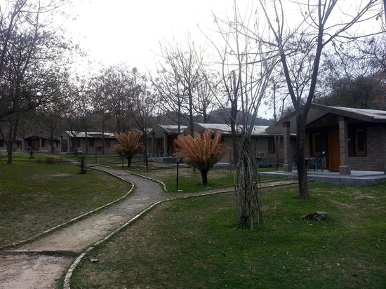 The Kikar Lodge: view of cottages
