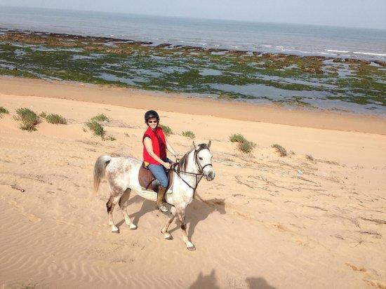 Equi Evasion : Riding with equievasion.com on the beach at Jiabatt (Essaouira)