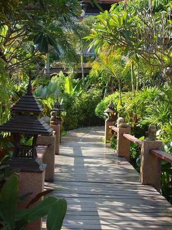 Samui Jasmine Resort: Gartenbereich auf dem Weg zum Pool / Restaurant