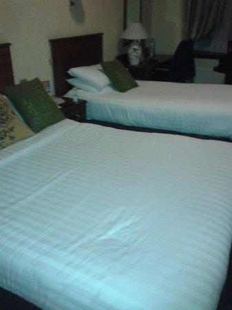 Blarney Woollen Mills Hotel: Family room