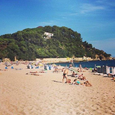 Surf Mar Hotel : Fennals beach