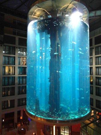 Radisson Blu Hotel, Berlin : вид из номера