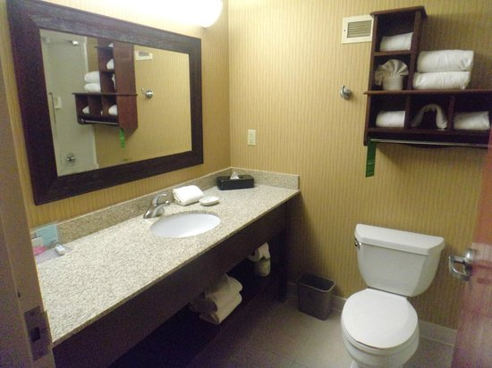 Hampton Inn - St. Louis Downtown at the Gateway Arch : Large bathroom