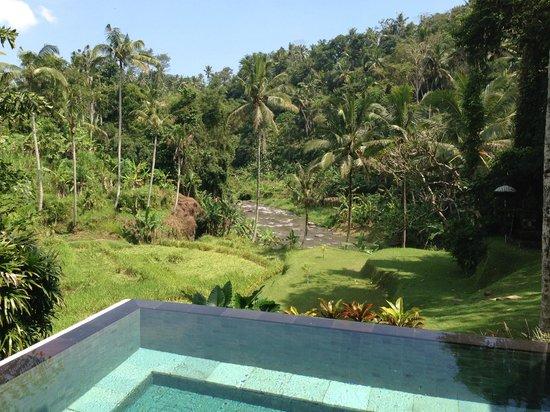 Four Seasons Resort Bali at Sayan: View from Villa 11 - beware of tourist passerby