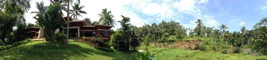 Four Seasons Resort Bali at Sayan: Nice view