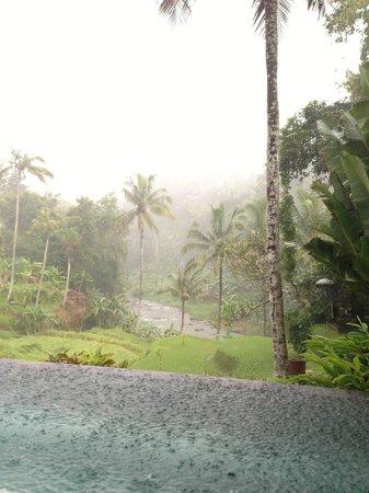 Four Seasons Resort Bali at Sayan: Heavy Rain!
