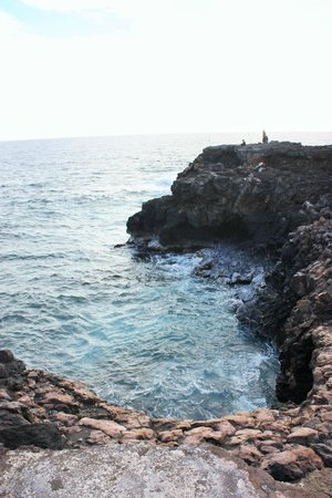 The Point at Poipu: Bay with sea turtles