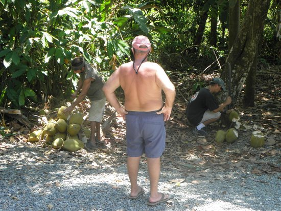 Coconut Grove Oceanfront Cottages: Richard with the men cutting the tops of the fresh coconuts from the tree