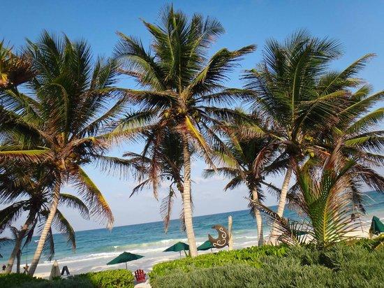 Cabanas La Luna: The Beach