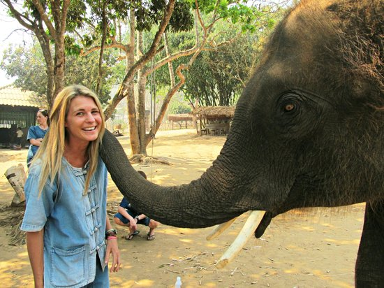 Baanchang Elephant Park - Private Day Tours: Getting a warm welcome at Baanchang Elephant Park