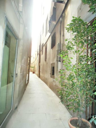 Discover Walks Barcelona: Picasso tour - narrowest street in Barcelona