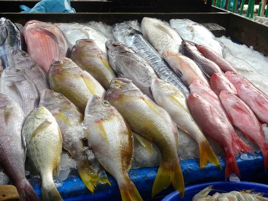 Eighth Bastion Hotel : Etal de poissons prés de la plage