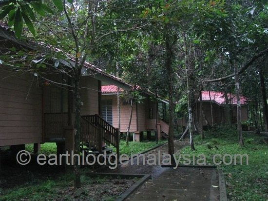 Earth Lodge Ulu Muda: The twin cabins
