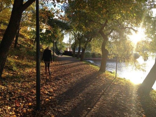 Djurgarden: Le parc
