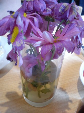 The Schoolrooms: Dead Flowers in Filthy Water on Table