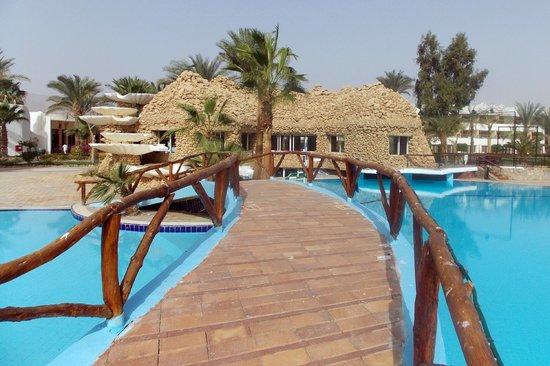 Nuweiba Coral Resort: Pool bar