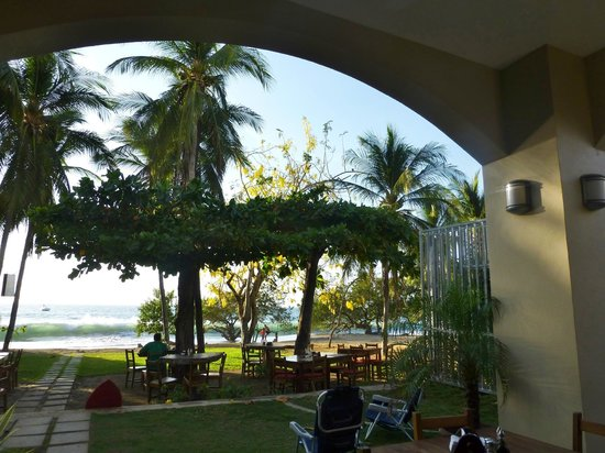 La Gaviota Tropical: View of the beach from Roberto's