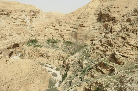 St. George's Monastery : deep gorge, said it was 1.5 hour hike from Jericho